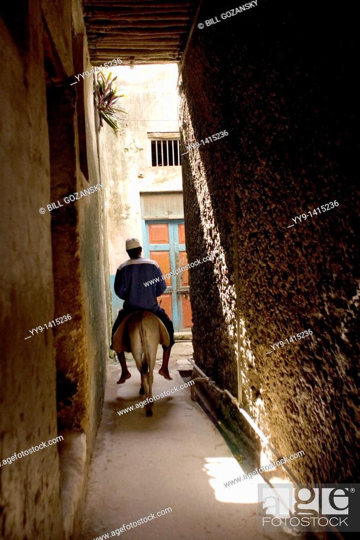 Stock Photo: Man riding donkey down narrow streets of Lamu town - Lamu Island, Kenya.