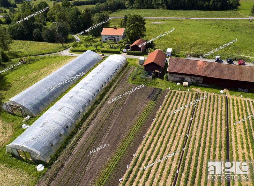 Stock Photo: Organic farming at Storå, near Lindesberg. Sweden.