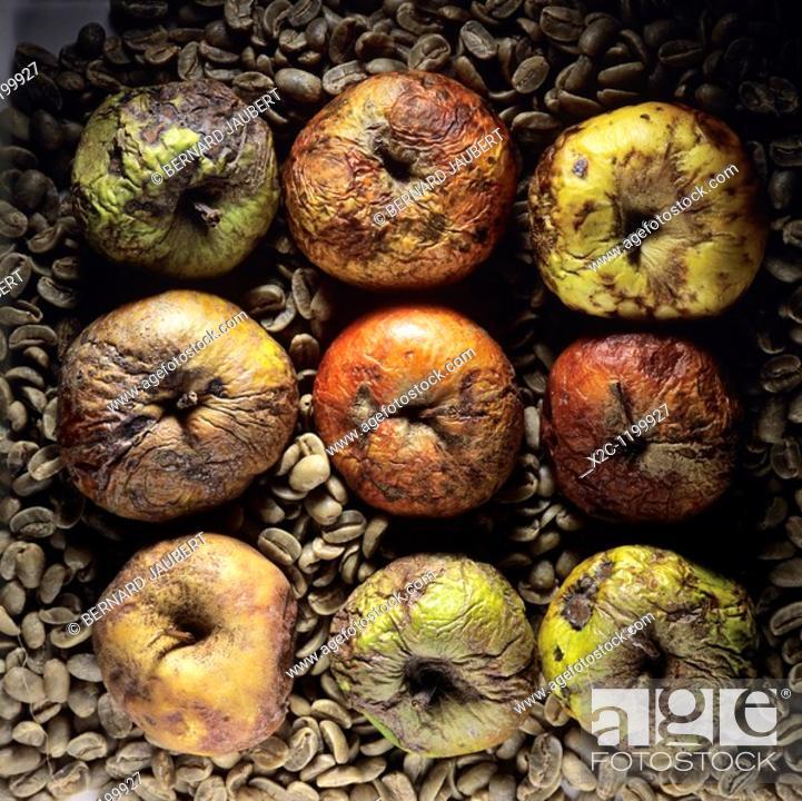 Stock Photo: Rotten apples.