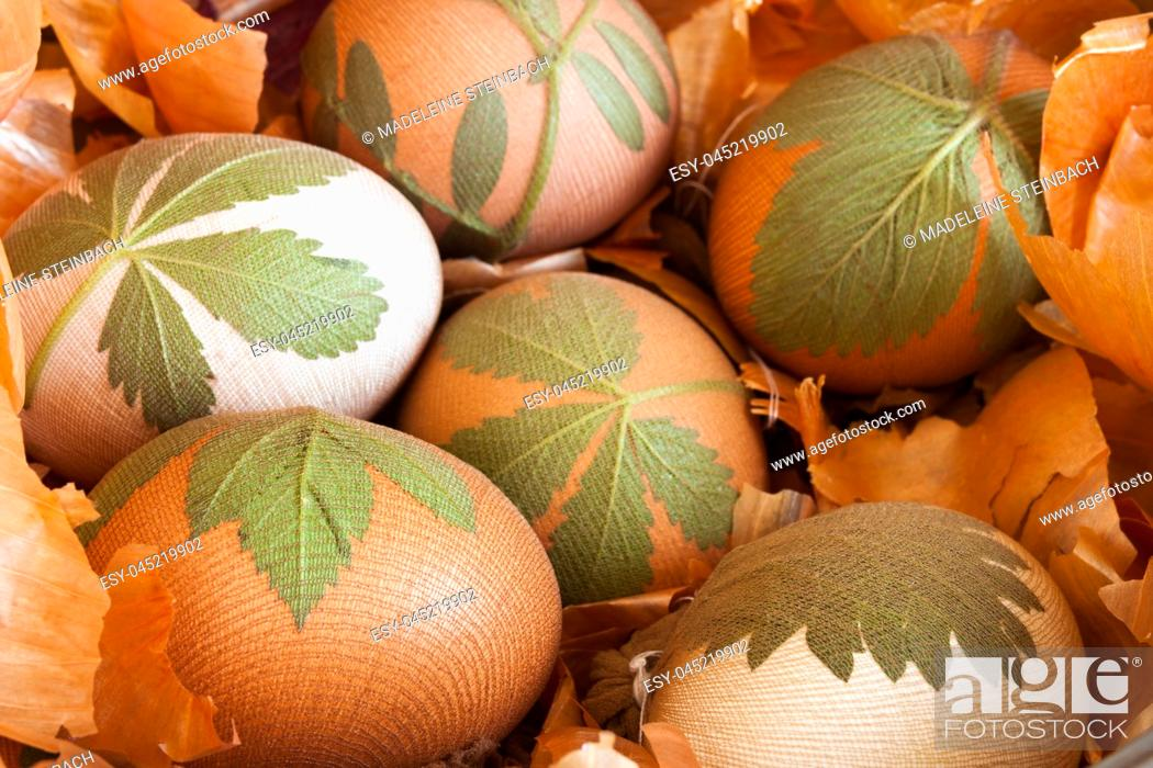 Stock Photo: Preparation of easter eggs dyed with onion peels with a pattern of fresh leaves.