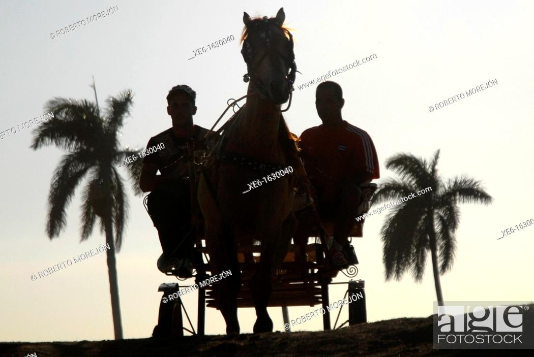 Stock Photo: cuban farmers, peasant party.