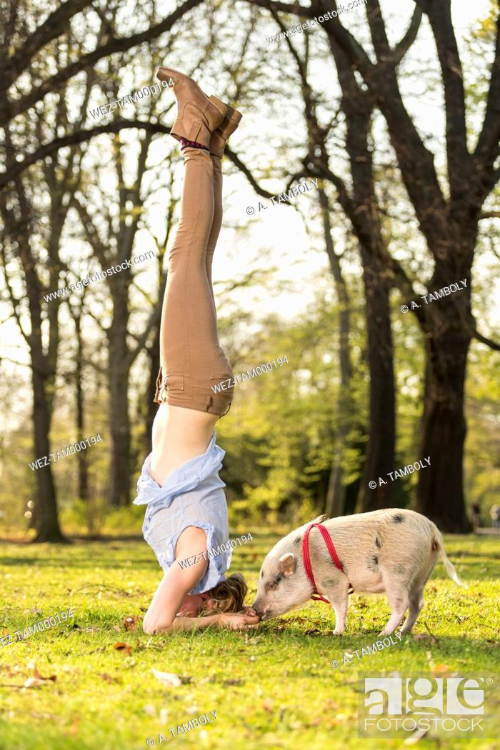 Stock Photo: Woman doing headstand with piglet in park.