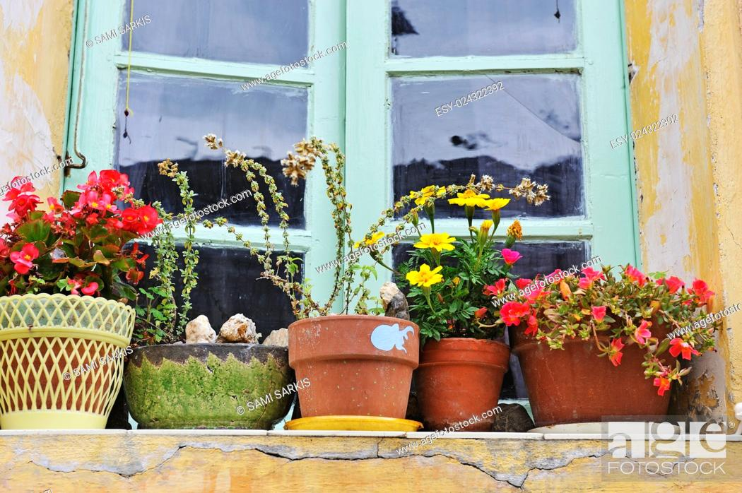 Stock Photo: Flowers in plant pots on a windowsill in a French village, France, Europe.