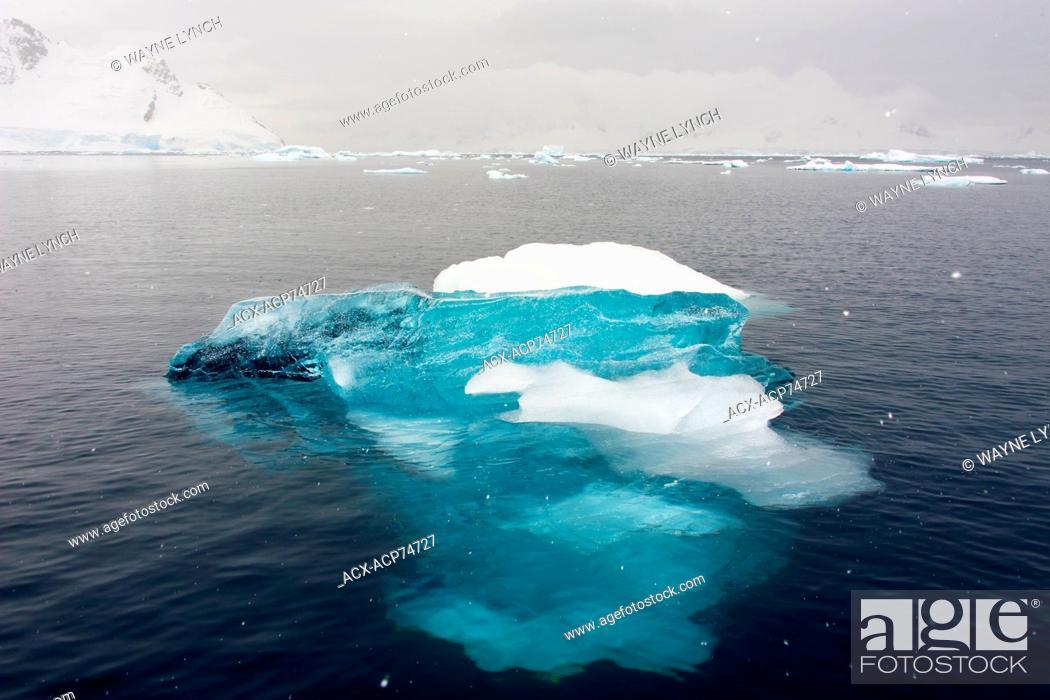 Imagen: Paradise Bay, Antarctic Peninsula.