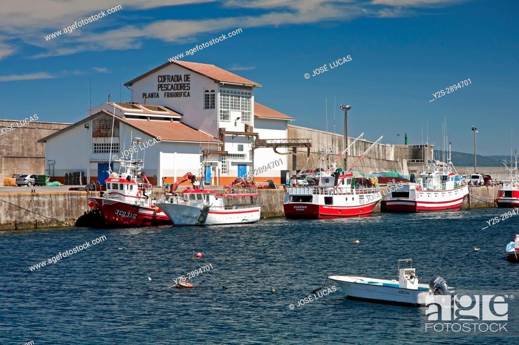 Stock Photo: Fishing port, Malpica de Bergantinos, La Coruna province, Region of Galicia, Spain, Europe.