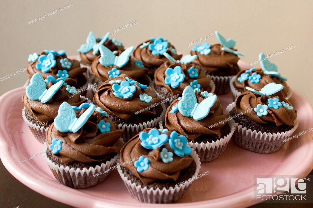 Stock Photo: Pink plate of cupcakes with chocolate frosting swirl and blue butterfly and flower decorations on.