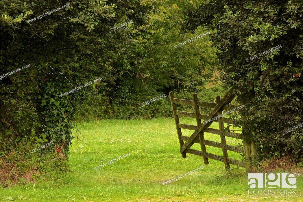 Stock Photo: Romantic ancient wooden gate, Omonville la Petite, Contention, 50, Normandy, France.