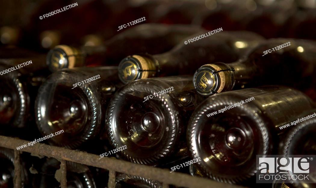 Stock Photo: Champagne fermenting in bottles according to the champenoise method.