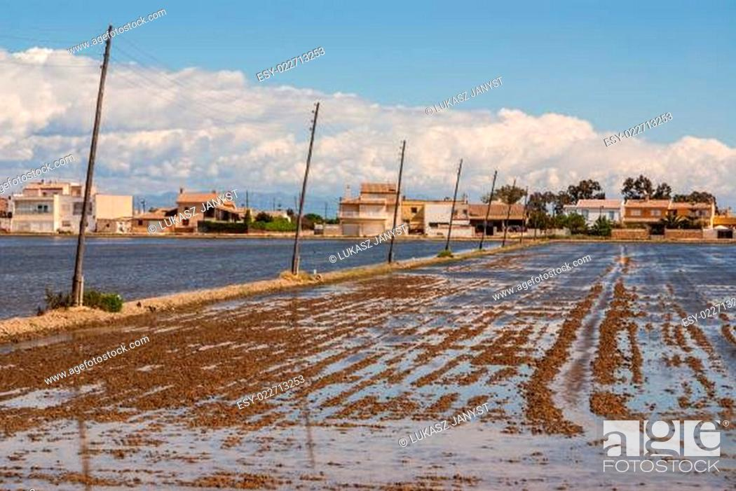 Stock Photo: Rustic old traditional house in Ebro Delta, Spain.
