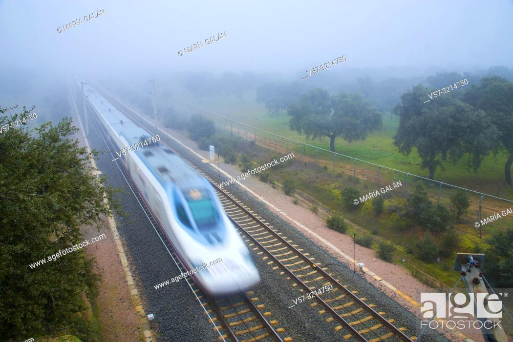 Imagen: AVE high-speed train traveling in the mist. Los Pedroches valley, Cordoba, Spain.