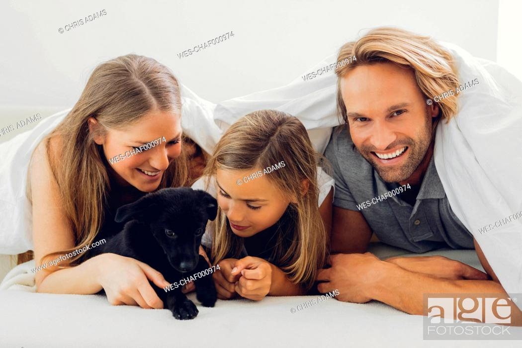 Stock Photo: Happy father, mother and daughter with puppy in bed.