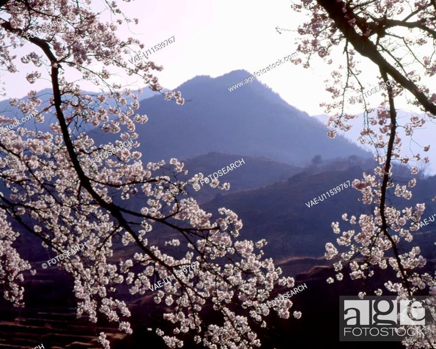 Stock Photo: mountain, landscape, spring, season, scene, sky, nature.