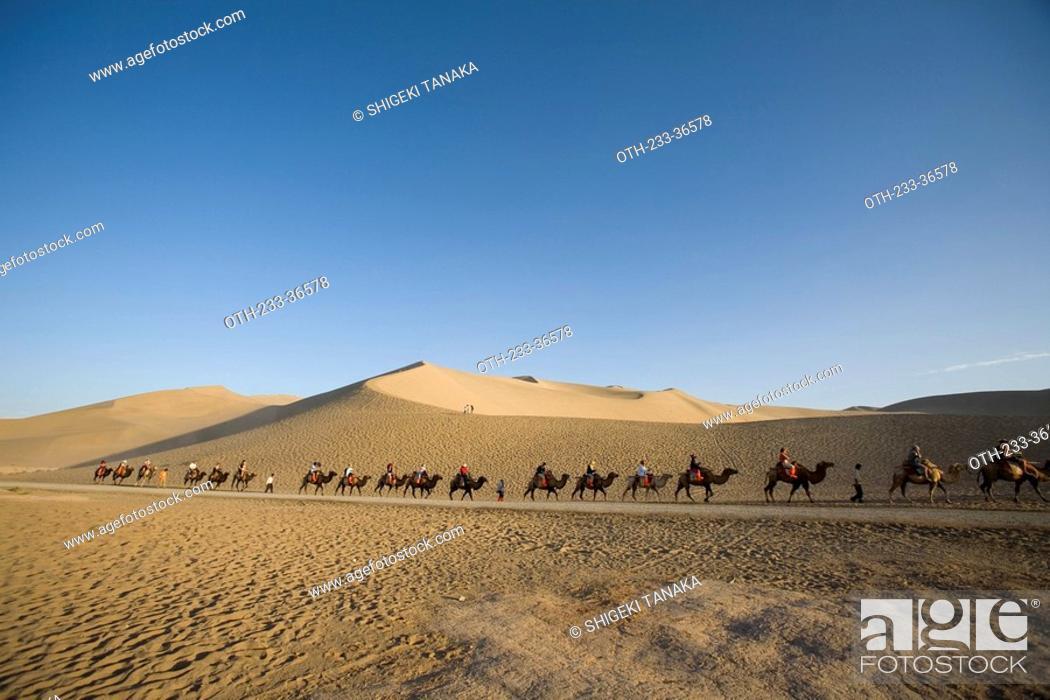 Stock Photo: Camel back riding on Mingsha Mountain, Dunhuang, China.