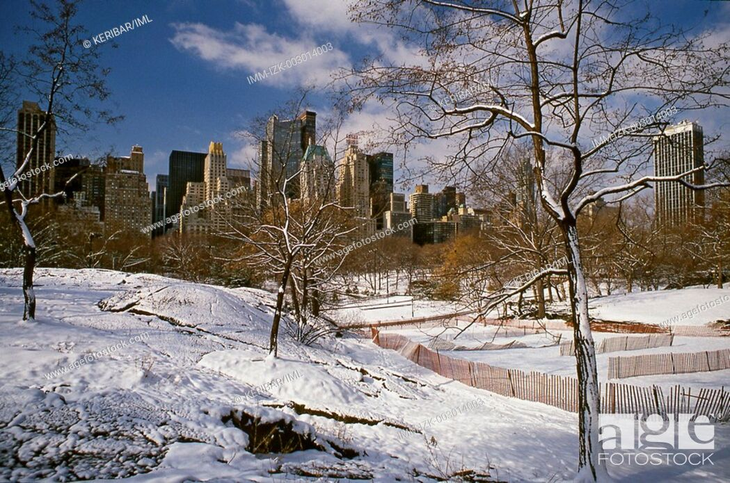 Stock Photo: Winter at Central Park , New York City, United States, America.