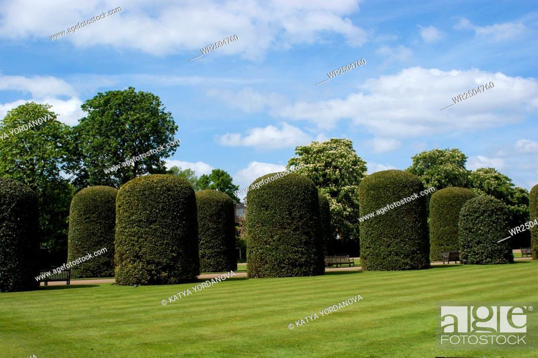 Stock Photo: Kensington palace garden, London.
