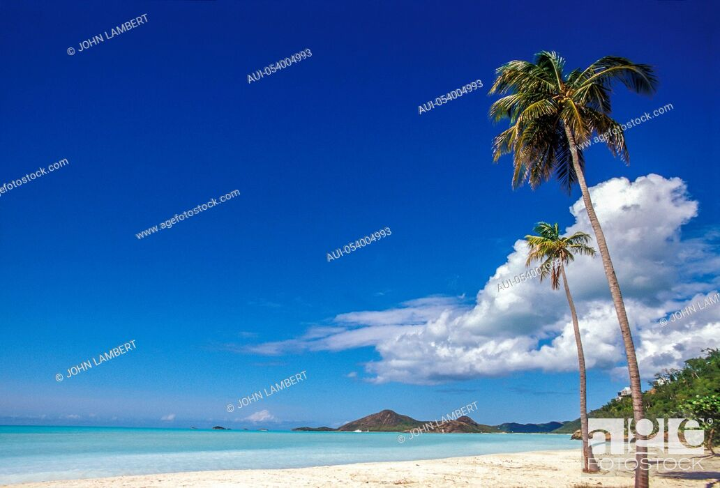 Stock Photo: antigua, deep bay beach.