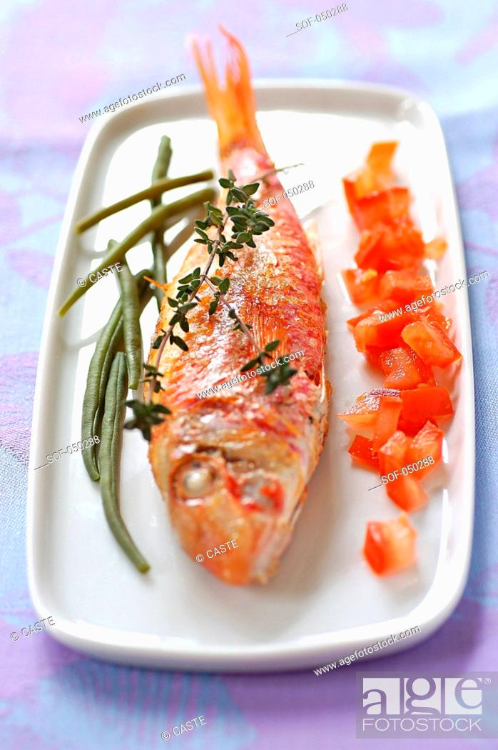 Stock Photo: thyme-grilled mullet with raw diced tomato and French beans.