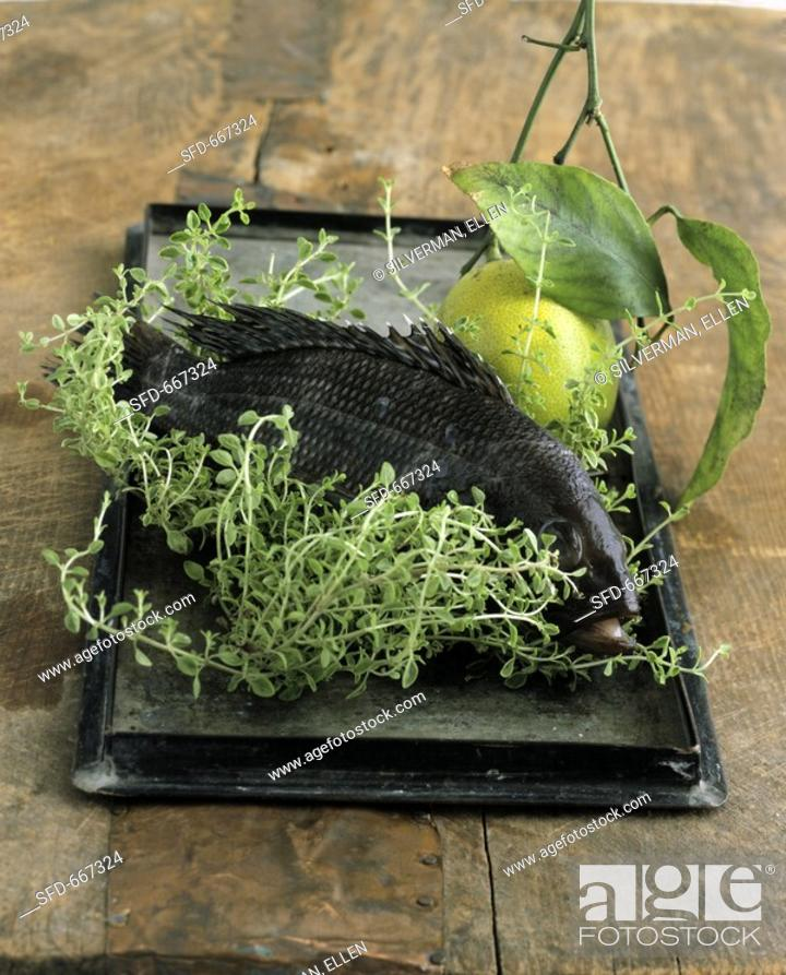Stock Photo: Bream with fresh thyme and lemon.