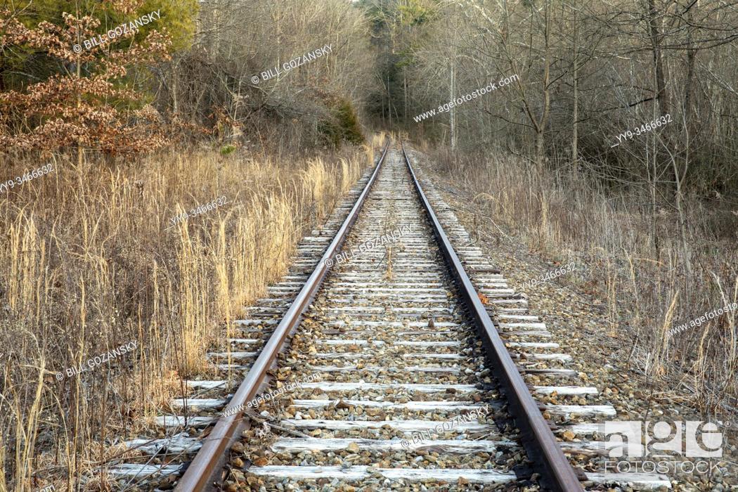Stock Photo: Abandoned railroad tracks leading into forest. Penrose (near Brevard), North Carolina, USA.