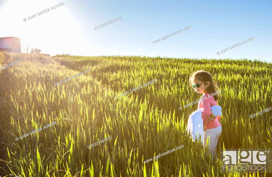 Photo de stock: Little girl and her doll walking through green cereal field at sunset, Spain.