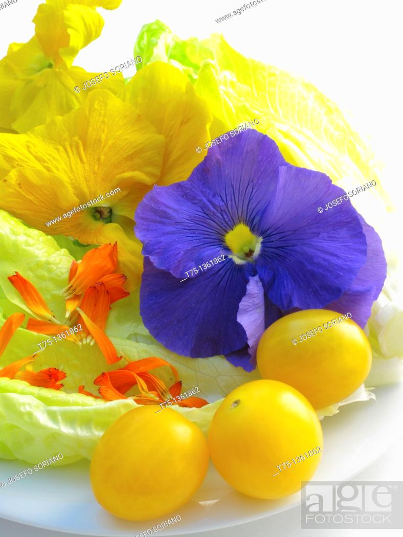 Stock Photo: Flowers and tomato salad.