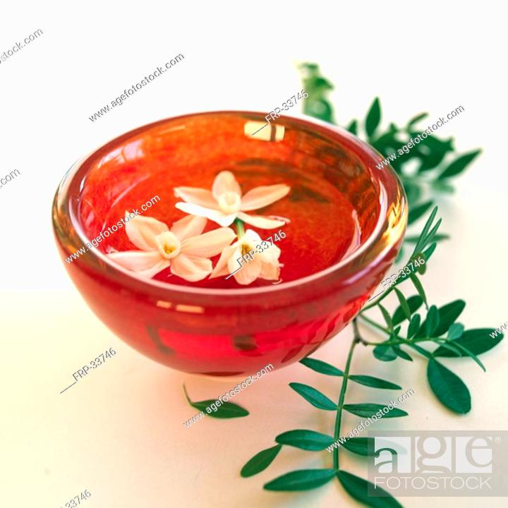 Stock Photo: Bunch Flowered Narcissus blossoms swimming in a red bowl.