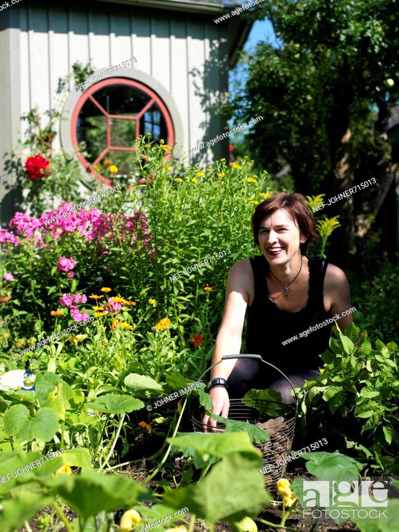 Stock Photo: Woman in a sunny garden, Sweden.