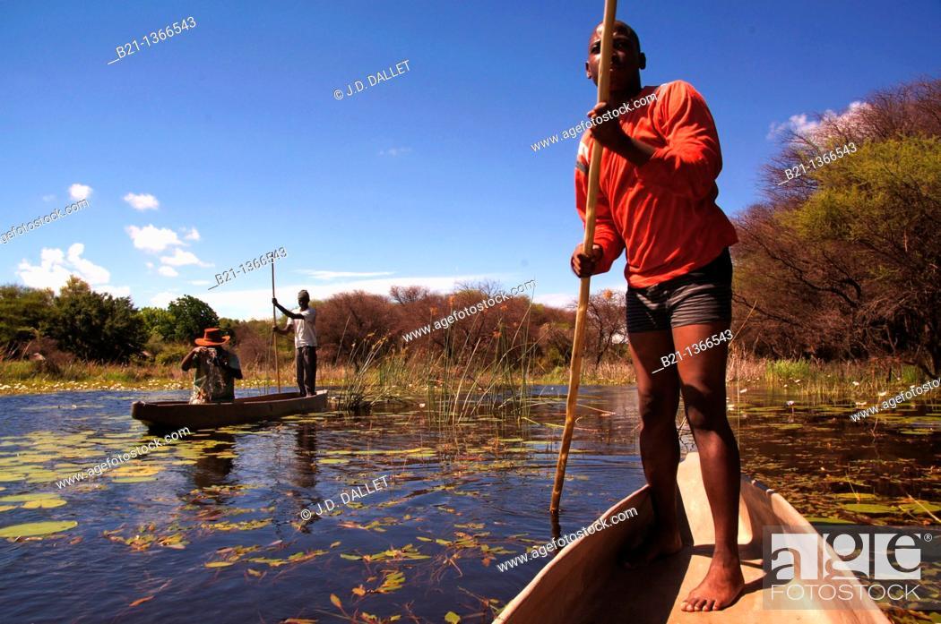 Stock Photo: On 'moroko' dug-out canoe at the Okavango Delta, Botswana.