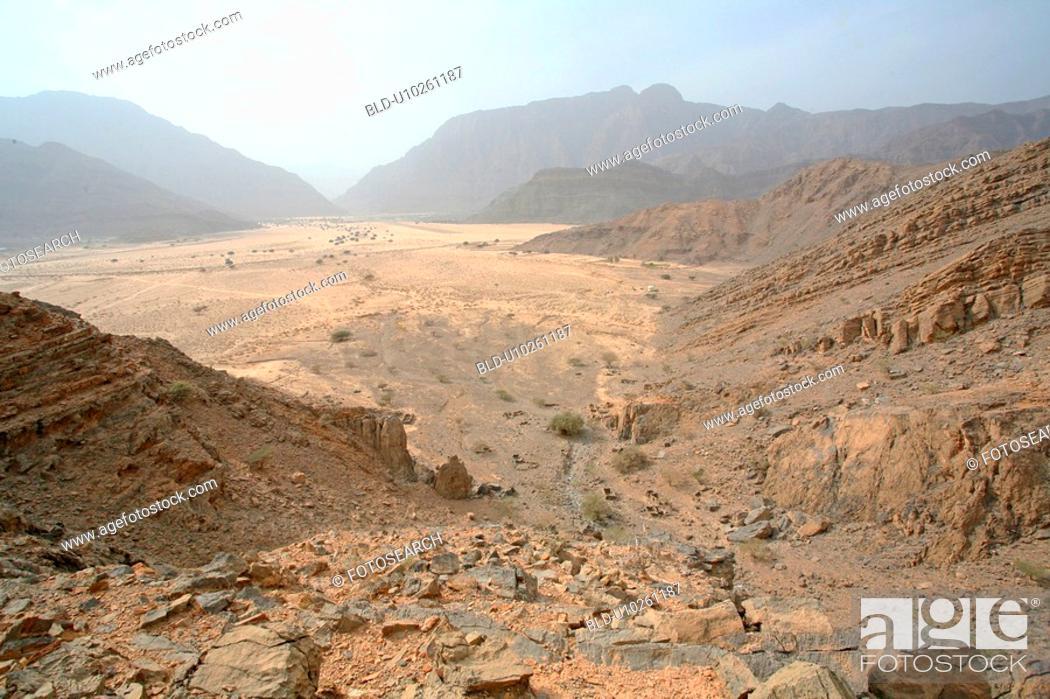 Stock Photo: desert.