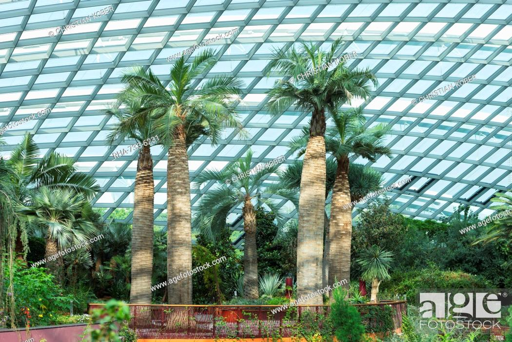 Stock Photo: Gardens by the Bay, Flower Garden, botanic gardens, Singapore, Southeast Asia, Asia.