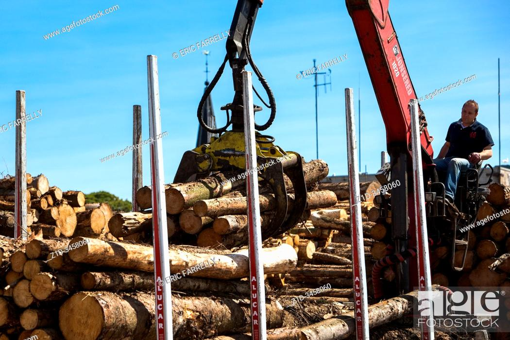 Imagen: Stacking timber cut from local forests, awaiting export at Montrose Docks Scotland UK.