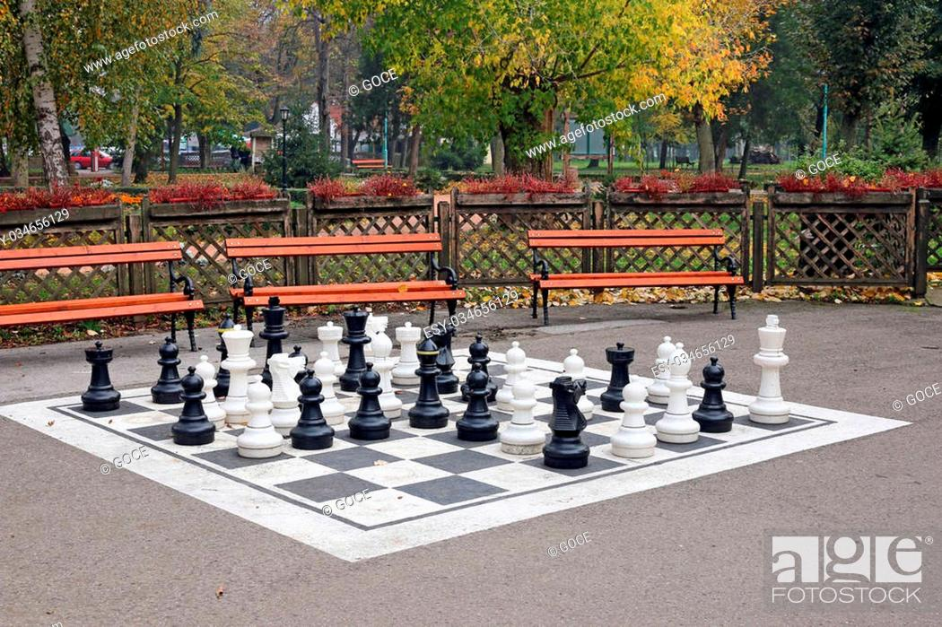 Stock Photo: chess figures in park autumn season.