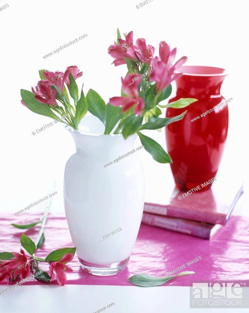 Stock Photo: White glass vase with alstroemeria.