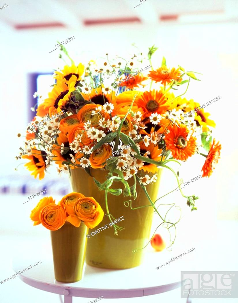 Stock Photo: camomile, buttercups, sun flowers, marigold and vetches.
