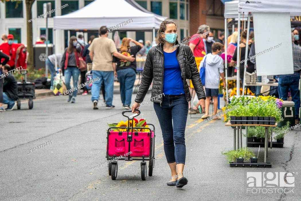 Stock Photo: Woman in face mask pulls cart behind her at Silver Spring Farmers Market , Silver Spring, MD.