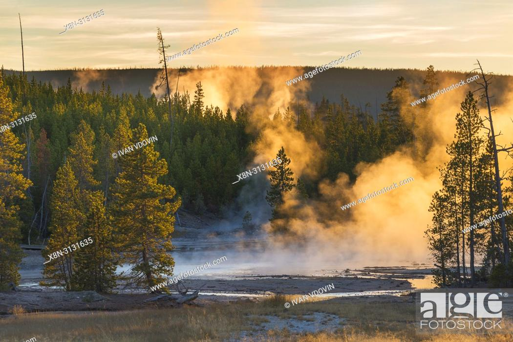 Imagen: Norris Geyser Basin, Yellowstone National Park, USA.