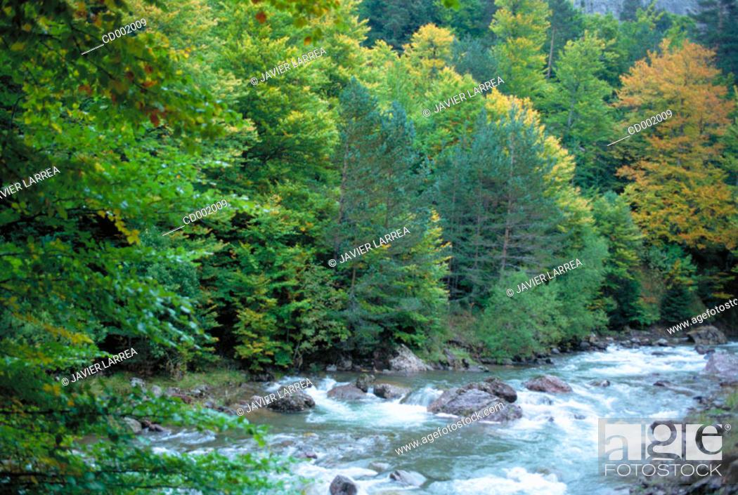 Stock Photo: Aragón River. Huesca province. Spain.