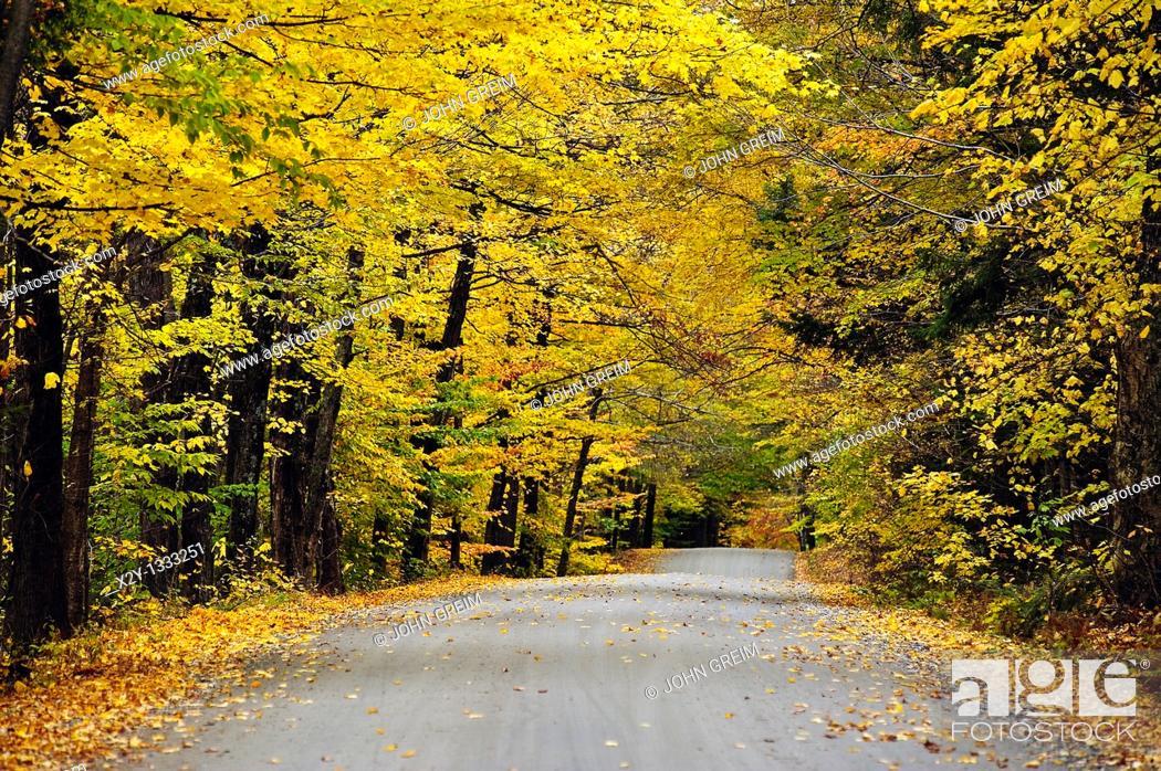 Stock Photo: Autumn country road, Vermont, VT, USA.