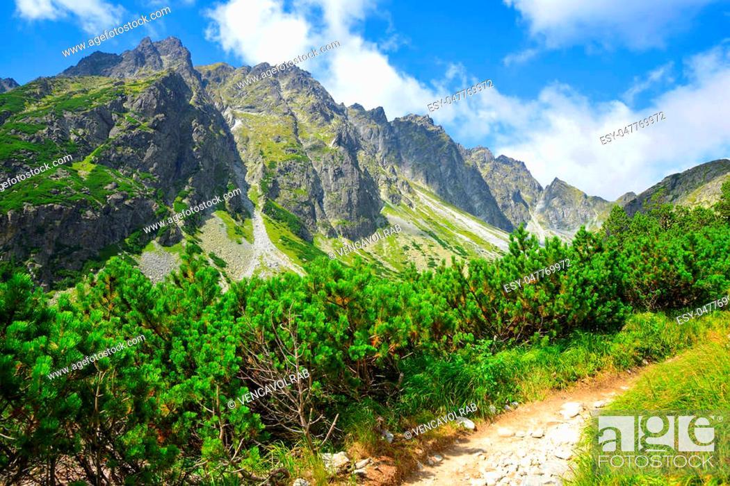Stock Photo: Summer mountain landscape. Hiking trail in Mengusovska Valley, Vysoke Tatry (High Tatras), Slovakia.
