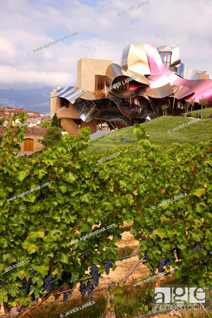 Vineyards And Hotel Designed By Frank Gehry Bodegas Marques De