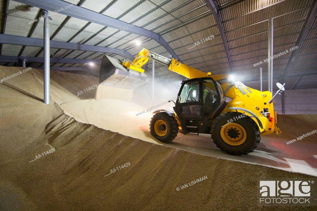 Stock Photo: Dumper Truck Unloading Wheat Into Grain Store.