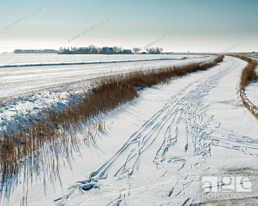 Stock Photo: Netherlands, Holland, Europe, Piaam, Friesland, landscape, field, meadow, winter, snow, ice, Village, fields,.