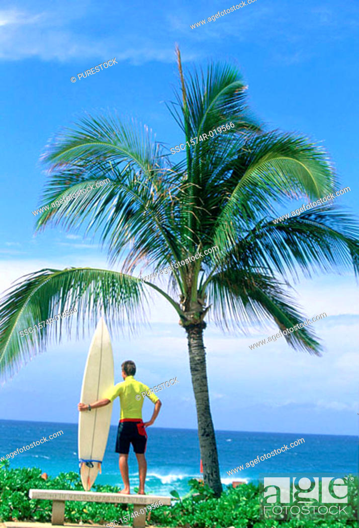 Stock Photo: Rear view of a young man holding a surfboard on the beach.