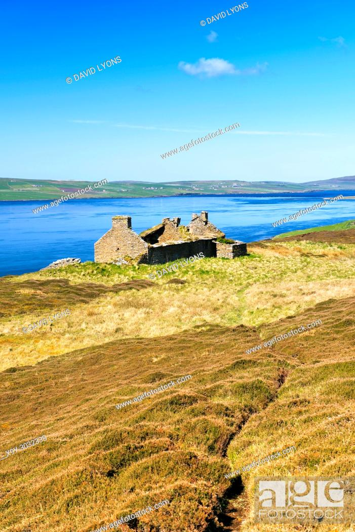 Stock Photo: Island of Rousay, Orkney, Scotland. Derelict ruined croft house hill farm near Westness. West over Eynhallow Sound. Path through early summer heather.
