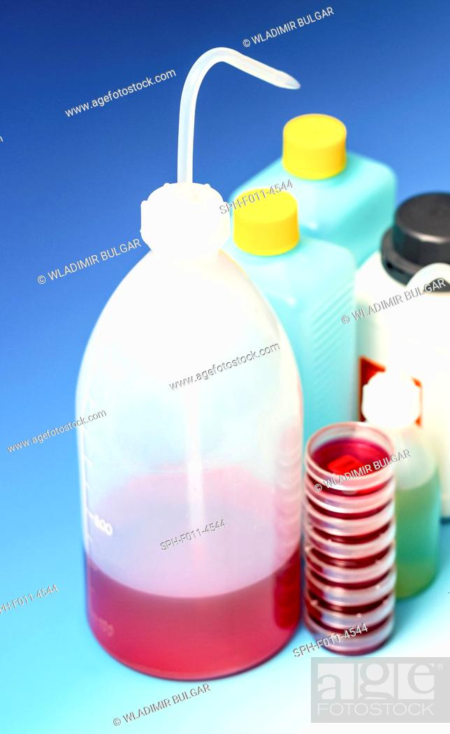 Imagen: Plastic dispensing bottles and containers.