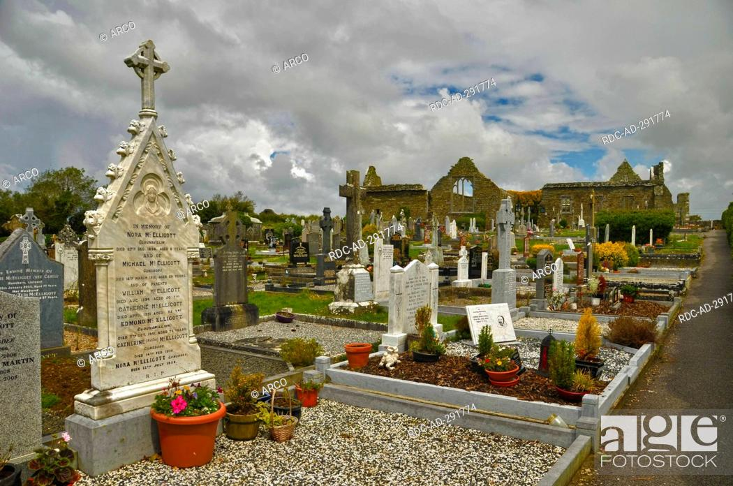 Stock Photo: Lislaughtin Friary, County Kerry, Ireland / Lislaughtin Abbey, Franciscan Abbey, cemetery.