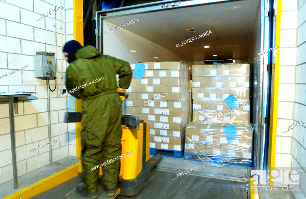 Stock Photo: Frozen food industry, cold-storage area, loading a truck. Navarre. Spain.