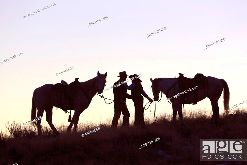 Stock Photo: United States , Wyoming , Shell, The Hideout Guest Ranch , cow-boy ,.