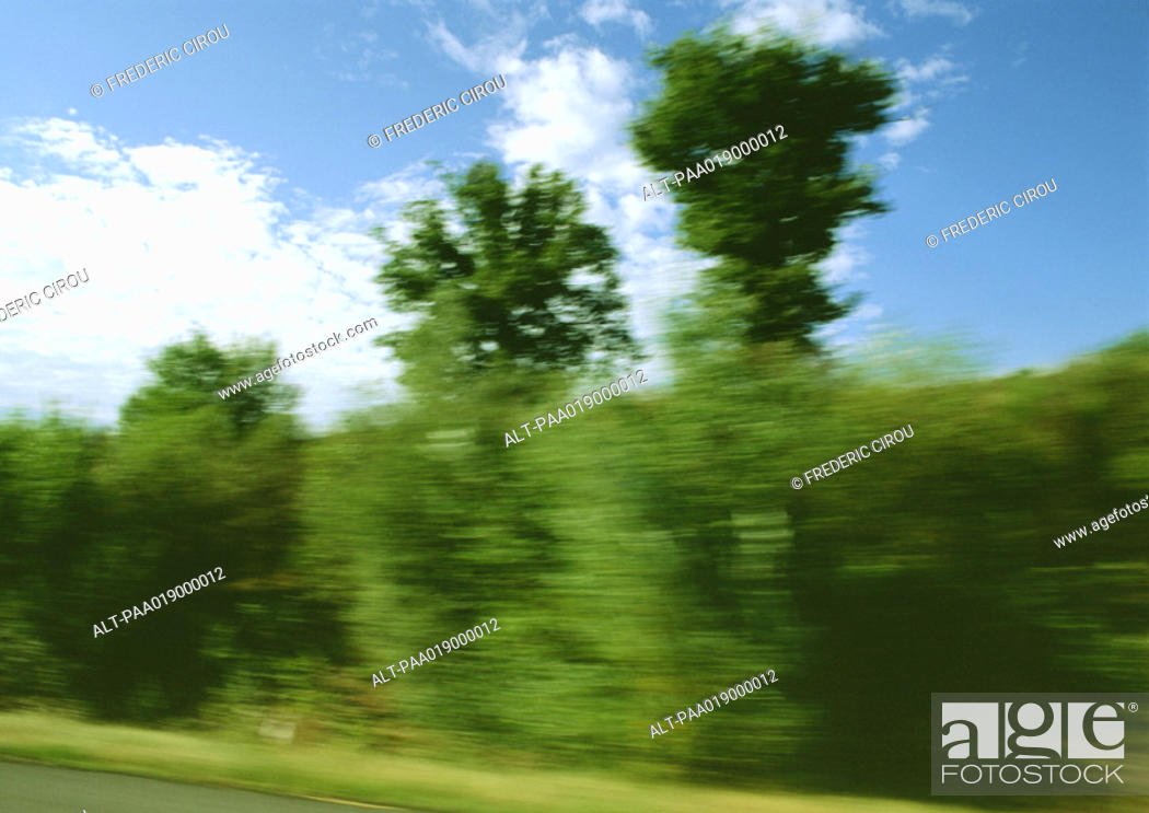 Stock Photo: Trees on side of road, blurry.