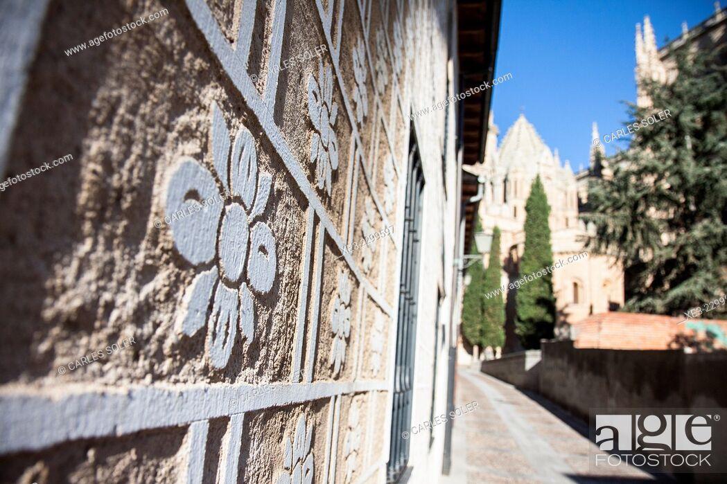 Stock Photo: Calles de Salamanca.